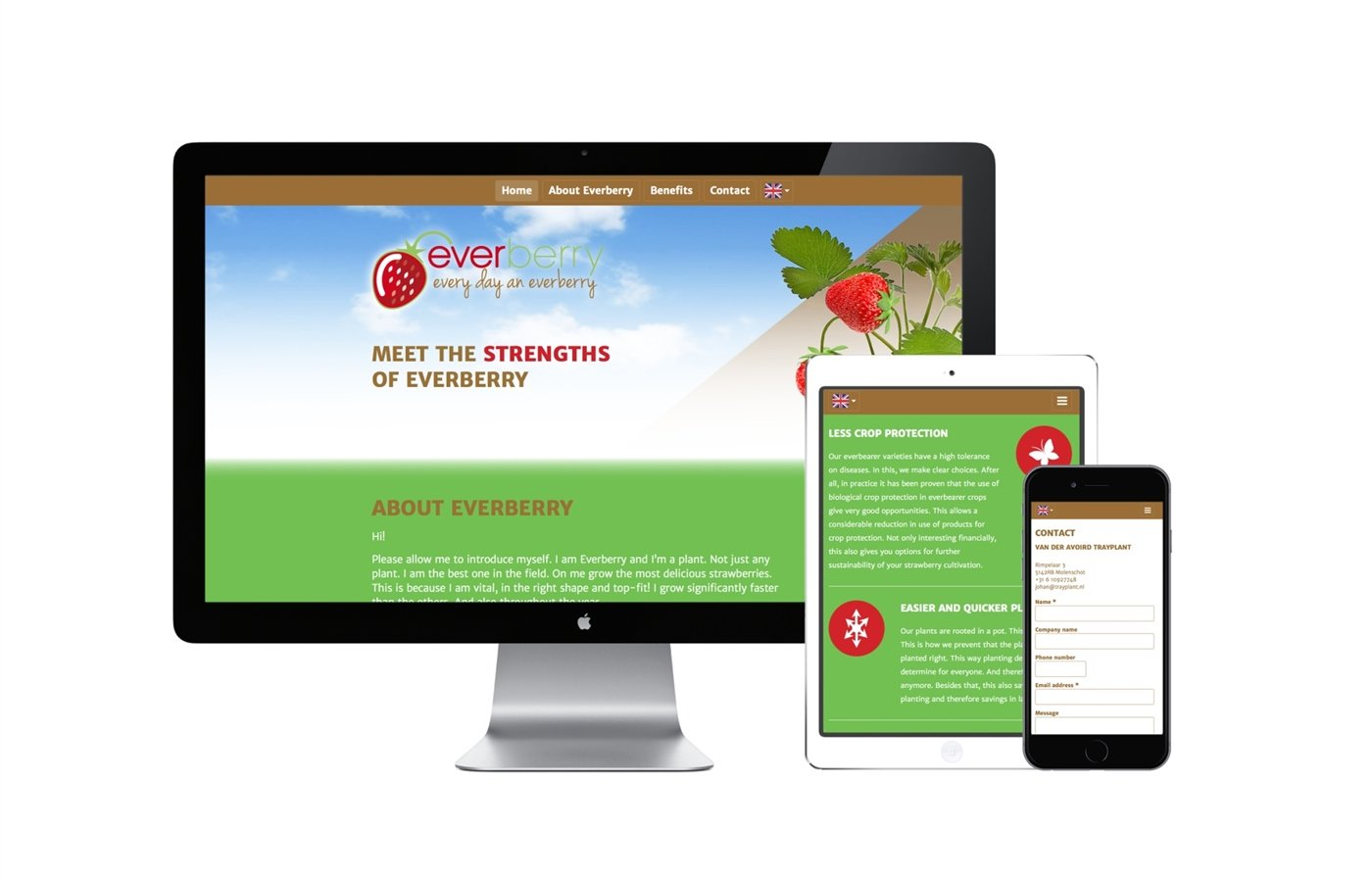 website responsive - everberry